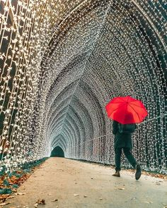 Find things to do in London in November with our guide to the month in London. Plan ahead and book your tickets to key events this month. London Winter, London Christmas, Kew Gardens Christmas, London In November, November 2019, Christmas Light Installation, Things To Do In London, Going On Holiday, Travel Tours