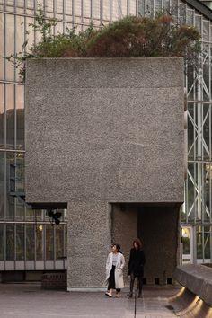 LE PAVI 909 — Barbican conservatory. London,...