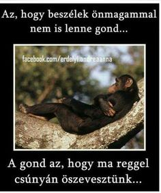 Az, hogy beszélek önmagammal nem is lenne gond . Sarcasm, I Laughed, Funny Pictures, Funny Quotes, Jokes, Thoughts, Feelings, Stupid Things, Wallpapers