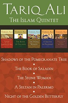 The Islam Quintet: Shadows of the Pomegranate Tree, The Book of Saladin, The Stone Woman, A Sultan in Palermo, and Night of the Golden Butterfly by [Ali, Tariq]