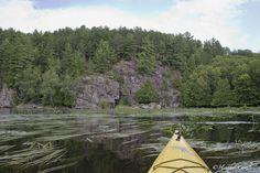 #ChickPicotheDay! (Day 2,092) Let's play a game.....find the 2 kayaks.......#Kayaks #OntheBayou #GrassyBay #BaptisteLake #Cliffs #Forest #Paddling #HideandSeek #BrantfordPhotographer #KayakCameraGirl #CanonGirl