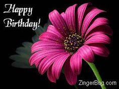 Happy Birthday Pink Flower Photo Glitter Graphic, Greeting, Comment, Meme or GIF