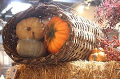 #roograyson #fall #fallforward #pumpkins #hay #design #decor #homedecor