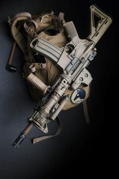 AR-type carbine w/foregrip and Eotech optics