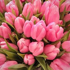 So many gorgeous tulips at the downtown Seattle @pikeplacepublicmarket
