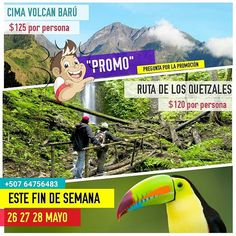 """""""PROMO PARA ESTE FIN DE SEMANA"""" """"CIMA VOLCÁN BARÚ"""" """"RUTA DE LOS QUETZALES"""" 26 27 28 MAYO """"Cupos Limitados"""" (Pregunta por la Promo)  Subamos a la Cima  Caminemos la Ruta de los Quetzales Aprovecha estas 2 oportunidades⛄ Vamos a acampar⛺ Una experiencia inolvidable.  No te quedes por fuera.  * Separa tu Cupo, y ven con tus amigos. * Personas con Condiciones físicas estables. * No se hacen devoluciones. (Depósitos o Dinero). Escribenos al Whatsapp +507 64756483  #panameño #playa #panama..."""
