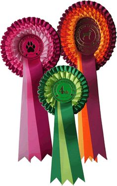 The Leger Rosettes Horses And Dogs, Show Horses, How To Make Ribbon, Ribbon Making, Fabric Rosette, Ribbon Crafts, Dog Show, Blue Ribbon, Diy Flowers