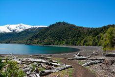 Parques nacionales de chile Conguillio
