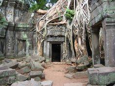 Angkor Wat é um templo no Cambodja, construído no início do século XII, pelo rei Suryavarman II. Apesar de originalmente ter sido um templo hindu, mais tarde, no século XIII, se tornou um local de oração para os budistas. Ao longo da história, Angkor Wat já foi reconstruído e reparado várias vezes, pois é considerado um local sagrado e histórico. Contudo, algumas partes do templo foram abandonadas e tomadas pela natureza.