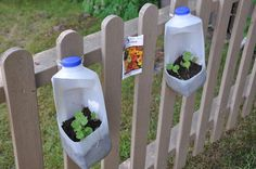 I Like the container idea for seed starting for kids.  We could do it at the end of the deck.  Or on the Hilty's chain link fence.