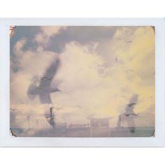 Cameras+Films Fuji Instax, Lomography, Big Shot, Cameras, Films, Photos, Painting, Movies, Pictures