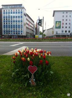 Liebefeld, Willy-Brand-Platz
