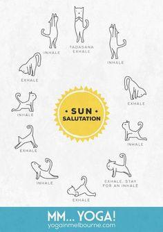 yogi's journal  yoga sequences back pain and yoga