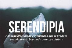 Encuentra tu serendipia.