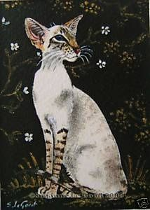 Aceo siamese cat painting print