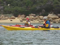 Beyond Basics Course - 3 Day Expedition Wilsons Prom/Snake Island Wilsons Prom, East Coast, Kayaking, Snake, Coastal, Island, Shop, Kayaks, A Snake