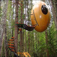 Free Spirit Spheres, set among the tall trees of the west coast rainforest of Vancouver Island, Canada. A tree house for adults. Unusual Hotels, Amazing Hotels, Cool Tree Houses, Tiny Houses, Crazy Houses, Dream Houses, Tree House Designs, In The Tree, Vancouver Island