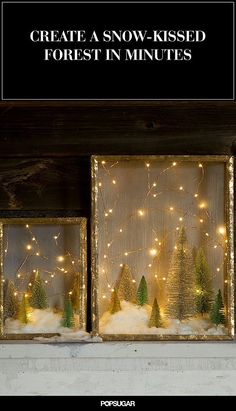 Create an Enchanted Forrest With This Shadow Box DIY