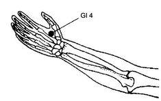 Входя в долину (GI 4) хэ-гу  Предостережение: запрещается использование этой точки беременным женщинам до наступления родов, так как воздействие на нее может вызвать преждевременные схватки.  Положение: на выпуклости между большим и указательным пальцами, в верхней части мышцы, которая выступает при соединении большого и указательного пальцев.  Действие: снимает боли в передней части головы, зубную боль, боль в плечах и боли при родах.