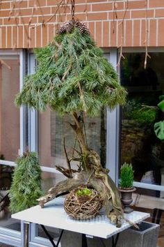 Schwebender Weihnachtsbaum - DIY - Karin Urban - NaturalSTyle