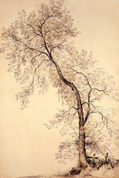 John Constable drawing Tree (UK - C) Landscape Drawings, Landscape Art, Landscape Paintings, Pencil Drawings, Art Drawings, Tree Sketches, Nature Drawing, Art Graphique, Gravure