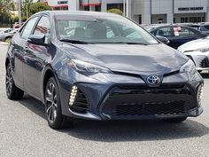 New 2019 Toyota Corolla SE Car in Clermont Corolla Car, Toyota Corolla, Toyota Rav4 Hybrid, Volvo V60, Chevrolet Trax, Honda Civic Type R, Mitsubishi Pajero, Chevrolet Equinox