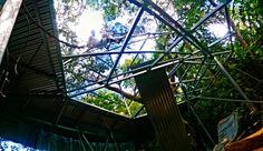 Instalando techo a la casa del árbol  - installing the roof to tree house
