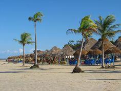 5 Motivos para a conhecer a Ilha de Marajó – PA