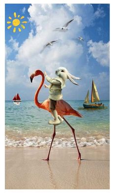 """""""Flamingo near the sea"""" by ziernor ❤ liked on Polyvore featuring art"""