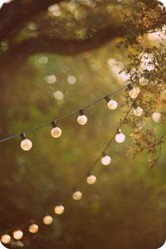 Lichtjes in de boom. Altijd mooi.