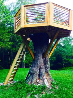 TREEHOUSE  Handcrafted Furniture & Specialized Carpentry — Working the Grain