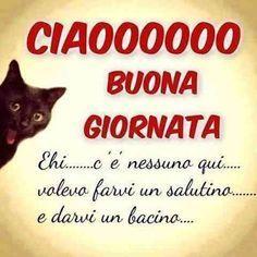 BUONA+GIORNATA+DIVERTENTI+immagini+e+frasi Good Morning Good Night, Funny Quotes, Signs, Genere, Snoopy, Smile, Facebook, Google, Phrases In Italian
