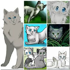 Come on guys Dovewing is not all bad