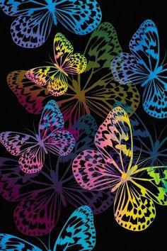 butterflies iPhone Wallpaper background
