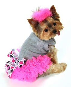 Neon Pink Chiffon Ruffles And A Pretty Black dc23f169f287