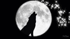 New Tattoo Wolf Desing Spirit Animal Princess Mononoke Ideas Lower Arm Tattoos, Small Forearm Tattoos, Wolf Tattoo Sleeve, Sleeve Tattoos, Tattoo Wolf, Single Rose Tattoos, Pine Tree Tattoo, Moon Drawing, Howl At The Moon