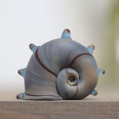 Спил стеклянной ракушки  #shell #artglass #businist #ракушка