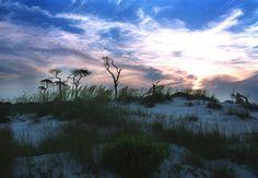 Horn Island, Mississippi Barrier Islands