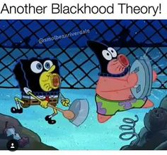 The blackhood