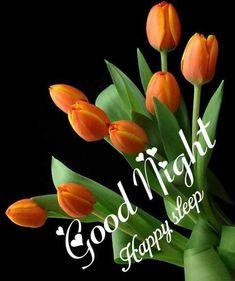 Good Night Qoutes, Good Night Messages, Good Night Wishes, Night Quotes, Good Morning Quotes, Good Night I Love You, Good Night Image, Good Morning Good Night, Sweet Night