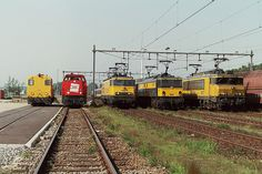 Line up at Amsterdam Westhavens, The Netherlands. September 20, 2003 | From left to right: 2278, 6498, 1302, 1501 and 1617.