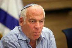 Ministro de Israel quer deportar gatos de rua por razão religiosa
