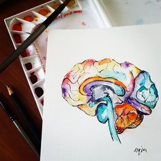 Watercolour Anatomy Art Brain by AlmostAnatomical on Etsy