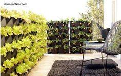 Resultados de la Búsqueda de imágenes de Google de http://m1.paperblog.com/i/59/599879/jardines-pequenos-verticales-L-ATKaq4.jpeg