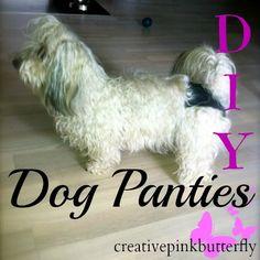 DIY Dog Panties