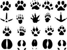 Cómo hacer huellas de animales utilizando sellos de goma