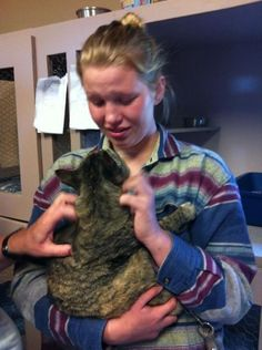 This girl walked into a shelter finally ready to adopt again, and found her cat who'd been missing for a year <3