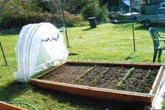 DIY-Greenhouses-apieceofrainbowblog (27)