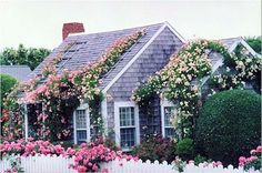 Every square inch filled with love... I'll take a pint size cottage any day.