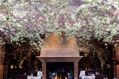The 7 prettiest restaurants in London - Sketch, Spring London & Petersham Nurseries - Tatler